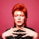 STECK TRIBUTE - David Bowie